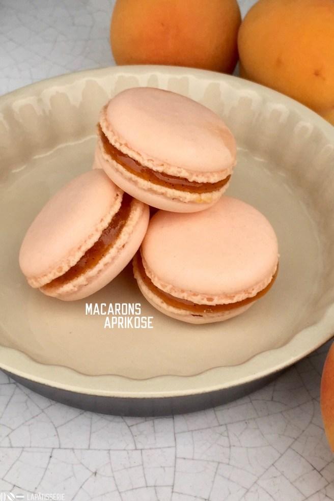 Aprikosen Macarons