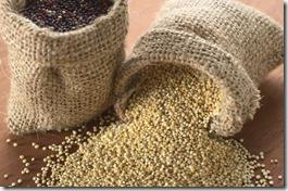 black-and-white-quinoa-grains