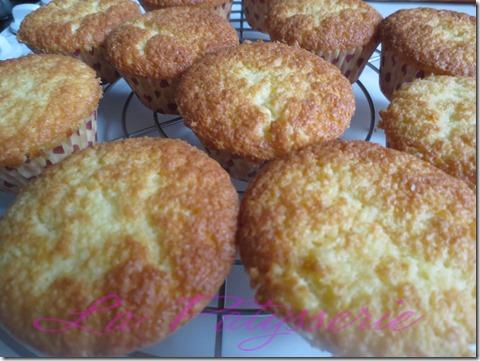 cupcakes sans gluten