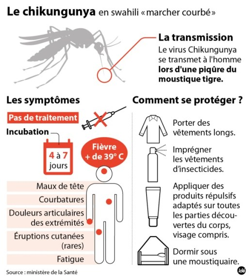 lutter contre le chikungunya