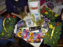 Plantes et graines