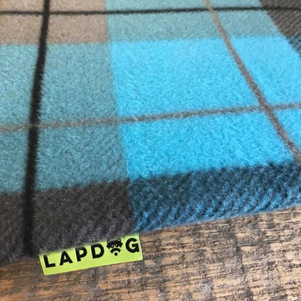 blue paid lapdog