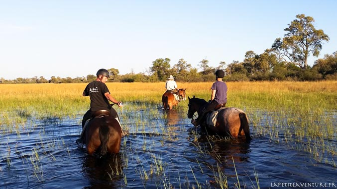 Botswana à cheval