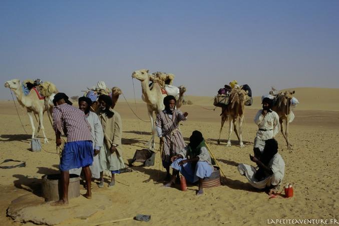 Mauritanie et chameliers