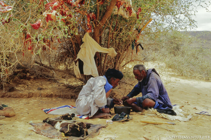 vinade séchée en Mauritanie