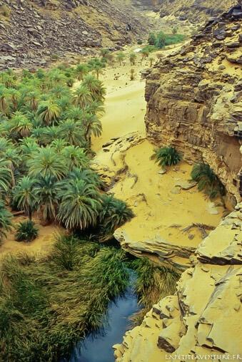 Terjit en Mauritanie