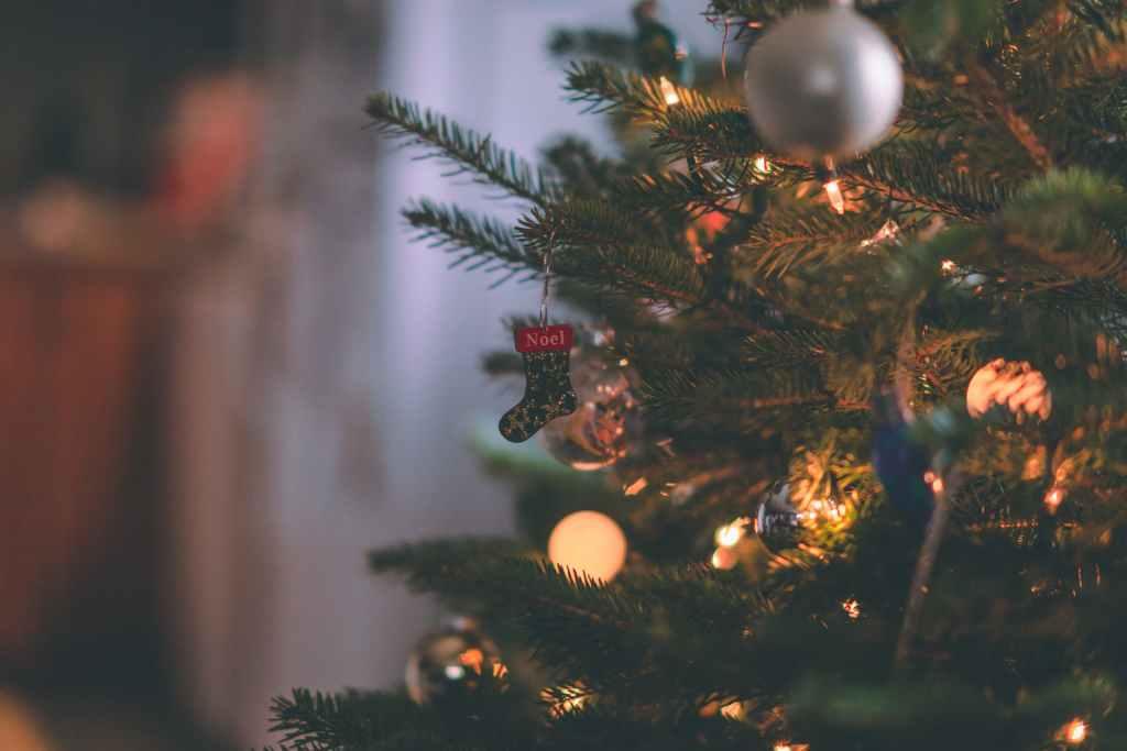 Le Poème De Noël Les Sapins De Guillaume Apollinaire