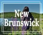 La Petite Watson New Brunswick