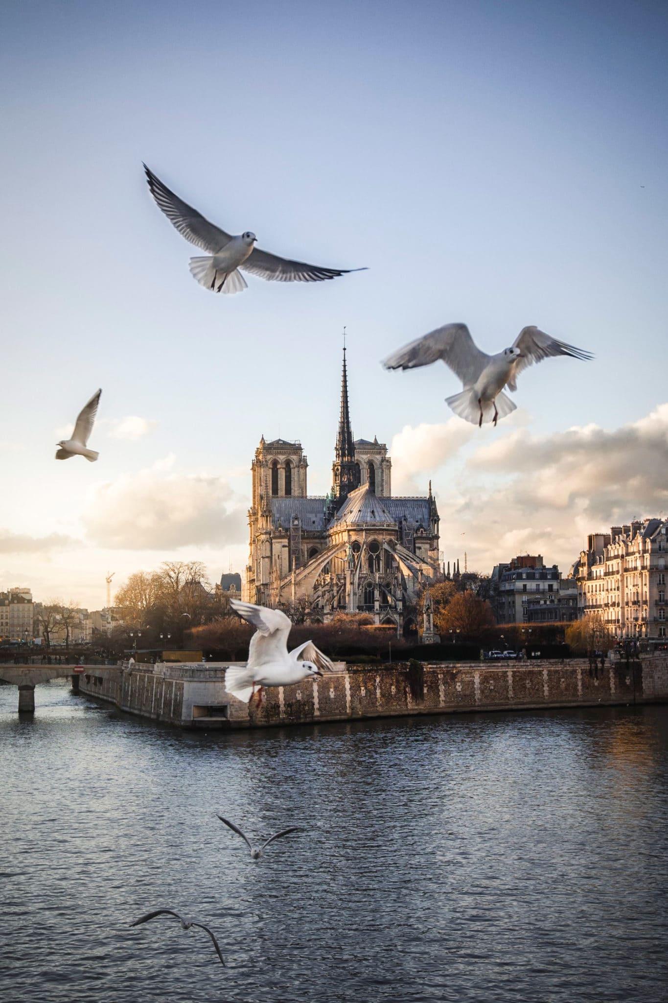 Vitesse d'obturation et netteté, Notre Dame, Paris pour illustrer l'article sur la vitesse d'obturation