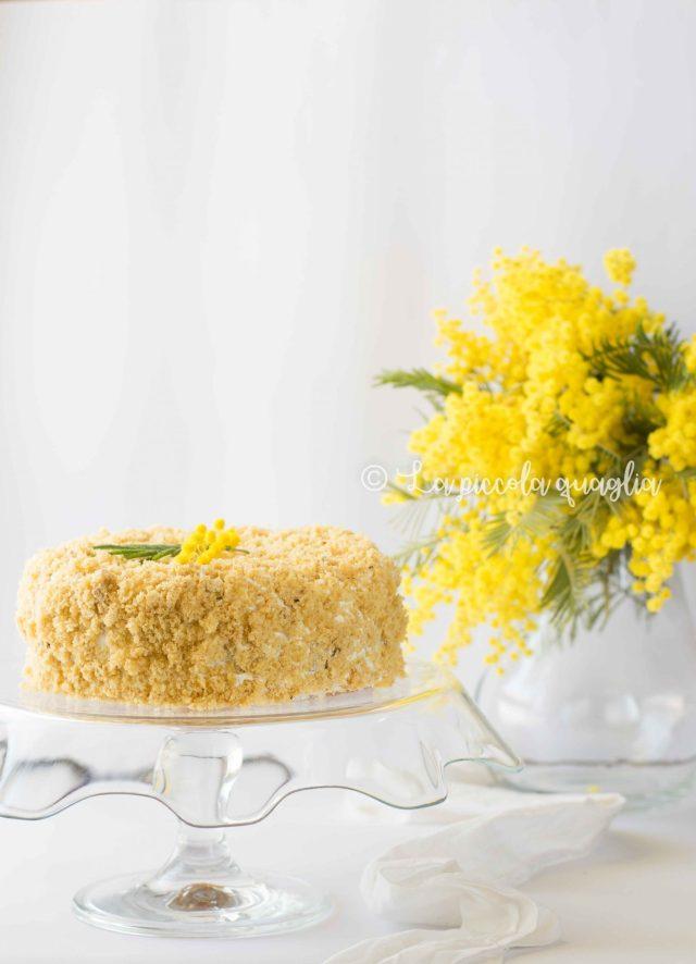 torta mimosa e mimose