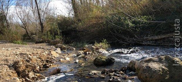 Ruta de Los Molinos (Alborache)