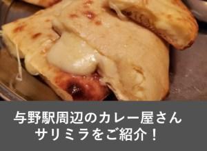 与野のおすすめランチ!カレー屋 サリミラに行ってまいりました!おいしいナンとマンゴーラッシーもあります!
