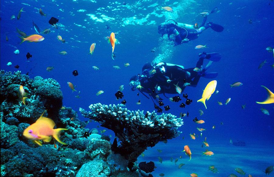 playas en riviera maya 8