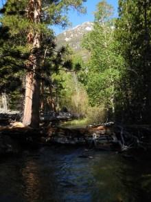 Hiking along Parker Creek
