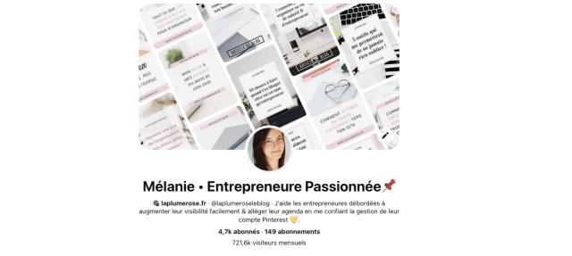 Profil Pinterest La plume rose