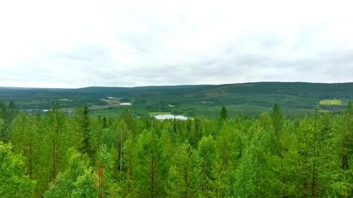 La Laponie Finlandaise, l'été.