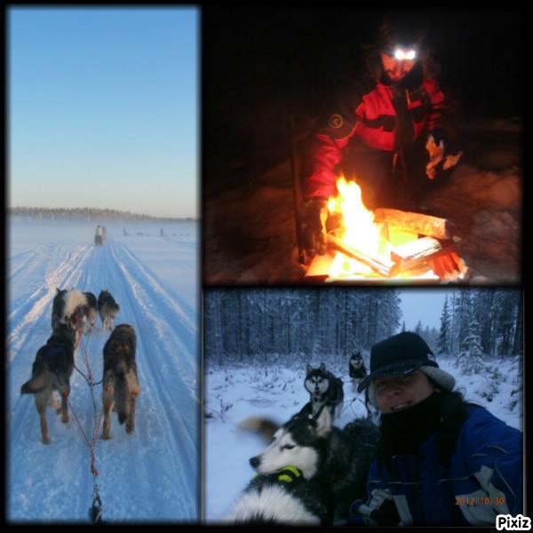 Séjour en Laponie, l'hiver : vêtements et accessoires utiles.
