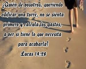 Lucas 14 28