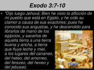 principiosdeliderazgo-cristiano112013-8-638