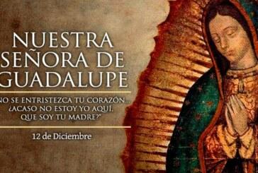 Le Mexique annule les festivités à la basilique de la Vierge de Guadalupe !