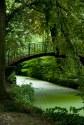 014 - El puente