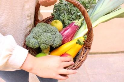 Rééquilibrage alimentaire vegan