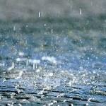 Allerta meteo, scuole chiuse ad Alessandria. Fiumi sotto controllo