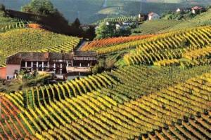turismo-monferrato-300×200