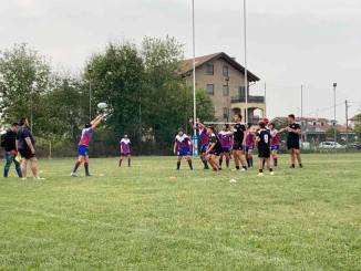 balck herons cuspo rugby
