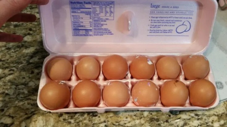 How to boil farm fresh eggs so they peel easily