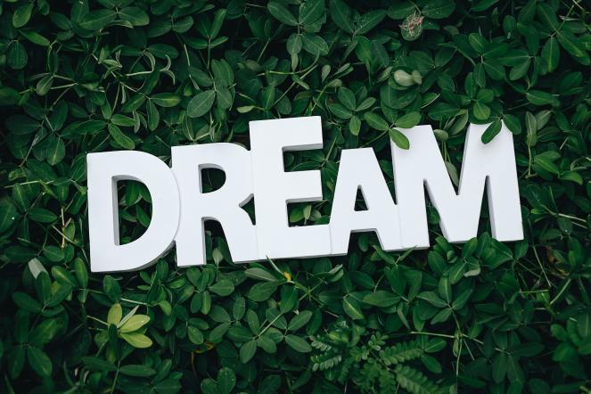 Dream about normal life. The word dream on green leaves