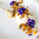 Panna Cotta au Fromage Blanc, Miel, Granola Noisette-Abricots et Fleurs de Violette