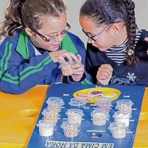 Duas meninas de aproximadamente 7 anos, de óculos, estão sentadas lado a lado, diante do brinquedo. A criança que está à esquerda, tem nas mãos, um potinho com grãos.