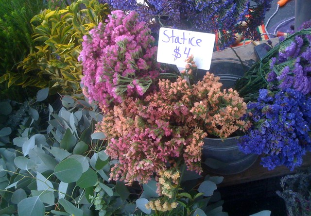 Statice Flowers at Farmers Market