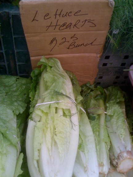 Lettuce Hearts at Larchmont Farmers Market