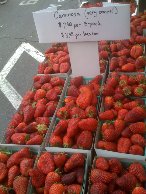 Camarosa Strawberries at Larchmont FM