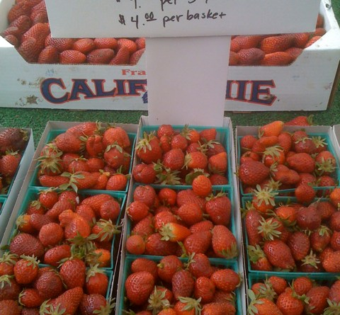 Chandler Strawberries at Farmers Market!