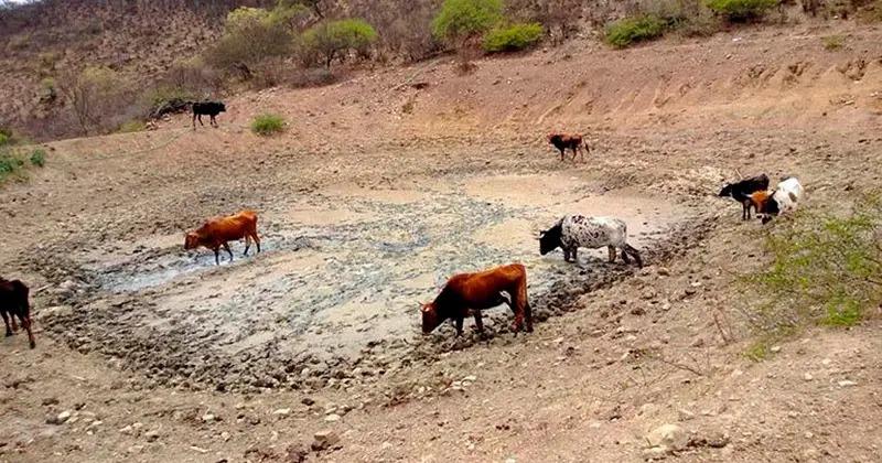 Lluvias mitigan incendios pero no detienen la sequía