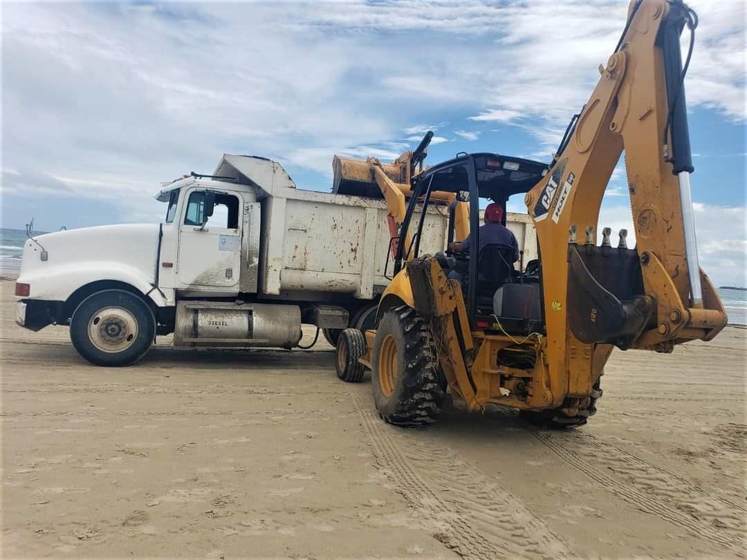 Continúan los trabajos de limpieza en playa Miramar