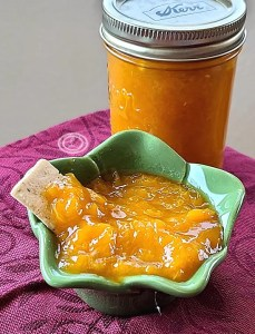 Apricot Preserves in a jar and in a small bowl with a cracker.