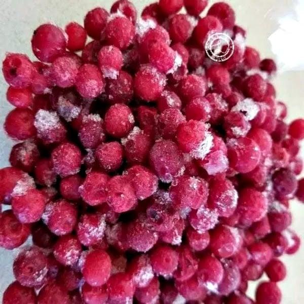 Frozen Lingonberries
