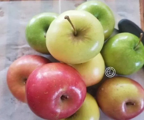 The variety of apples I used