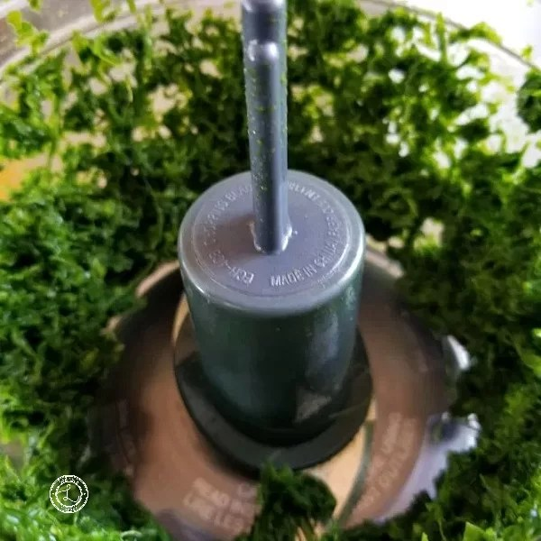 Processing the herbs in a food processor