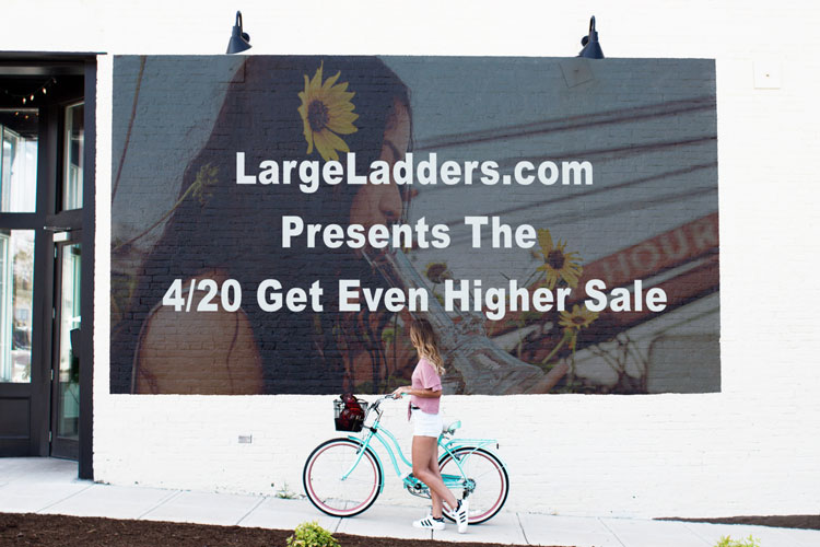 Marketing plan that shows how Large Ladders will sell our product.