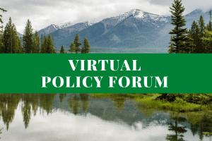 Virtual Policy Forum