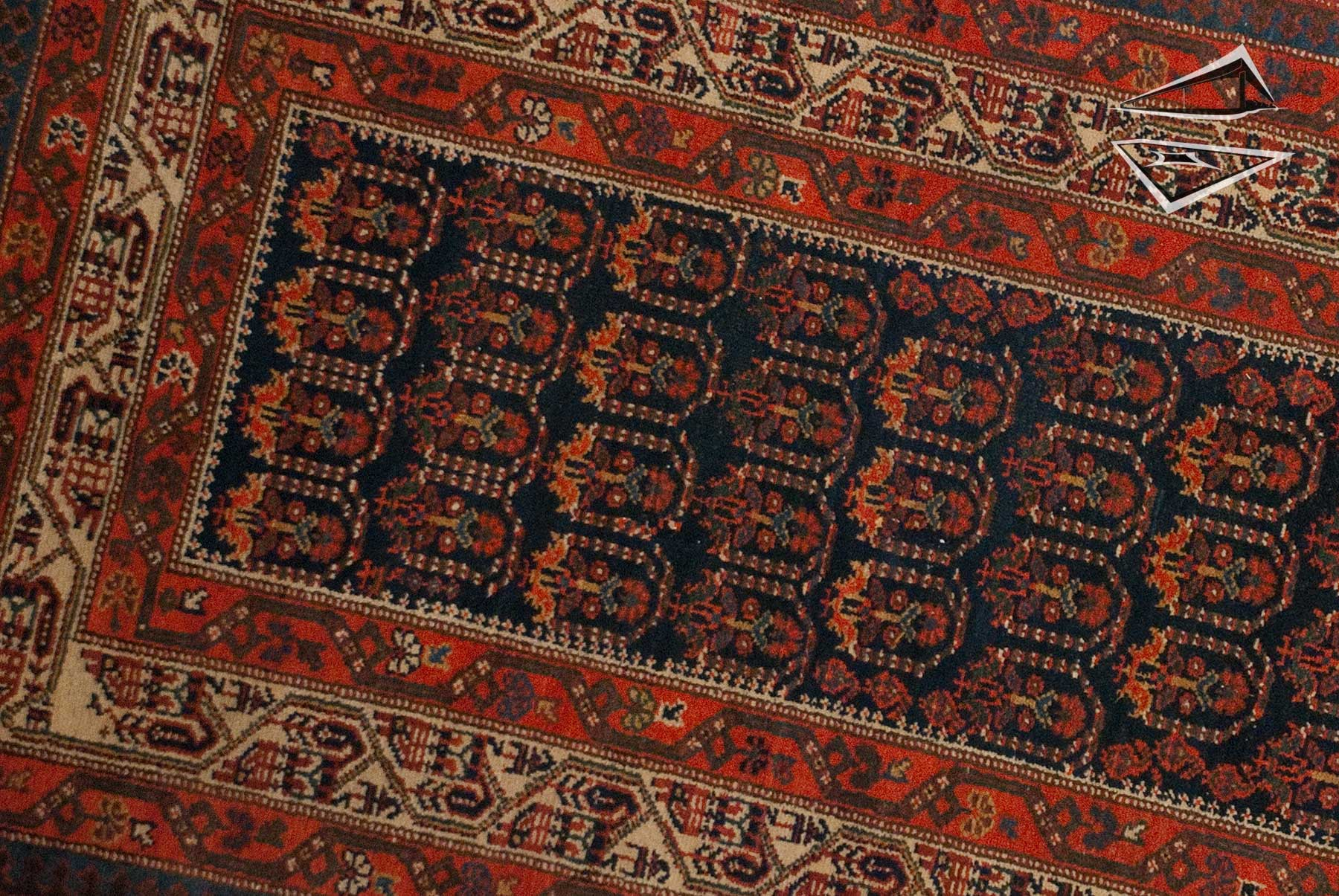 Image result for hamadan rug