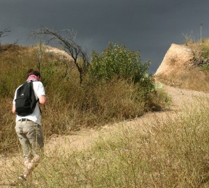 """Whiting Ranch Wilderness Park has 23 trails, both paved and dirt, offering """"great escapes"""" for hikers and mountain bikers and other nature lovers (John Fredericks)"""