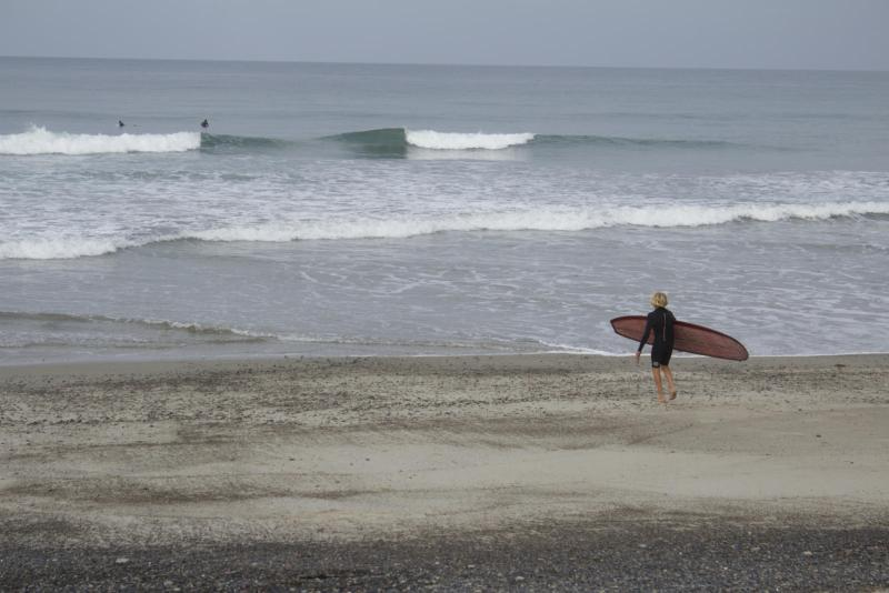 Surfers go out to enjoy a morning surf at T Street Beach despite the recent shark sightings. (Photo by Niko LaBarbera)