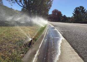 Roadside turf lawn is being watered along La Novia Ave in San Juan Capistrano despite day-time watering being prohibited year-round. (Kurtis Rattay/ Lariat)