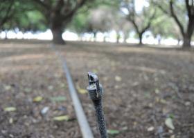Saddleback College converted to reclaimed water for irrigation uses. (Flickr/USDA/used with a CC-BY-2.0 license)